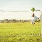 jak-zrobić-bramkę-do-piłki-nożnej