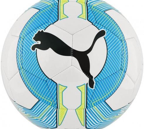 Piłka nożna Puma Evo Force