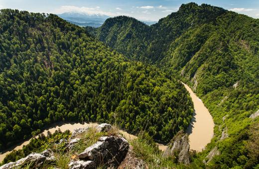 Widok z Sokolicy – Dunajec (źródło flickr.com)