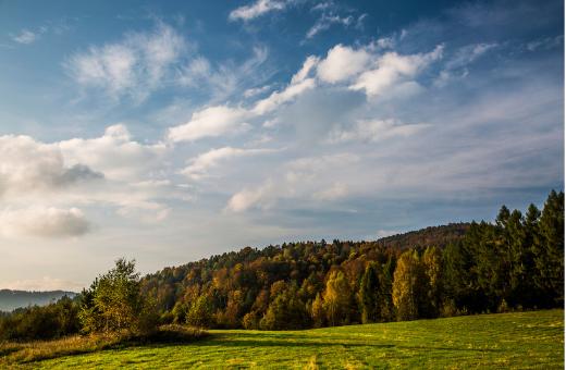 Pusta Wielka, Beskid Sądecki (źródło flickr.com)