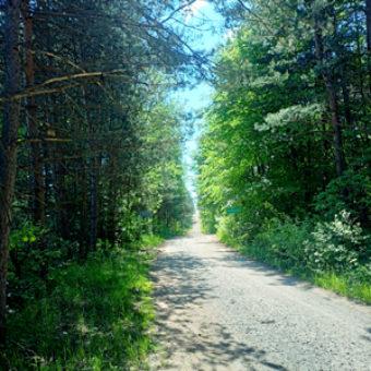 najlepsze-trasy-rowerowe-na-slasku-i-w-malopolsce-szlak-orlich-gniazd-droga-szutrowa-sklep-sportowo-turystyczny-sportbazar.pl-300x300px