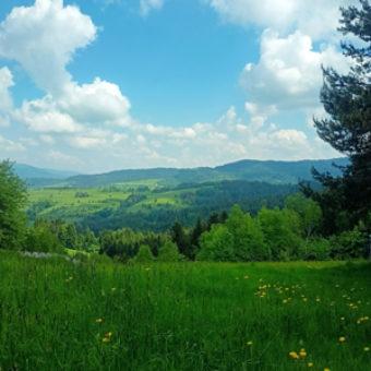 najlepsze-trasy-rowerowe-na-slasku-i-w-malopolsce-szlak-orlich-gniazd-sklep-sportowo-turystyczny-sportbazar.pl-300x300px